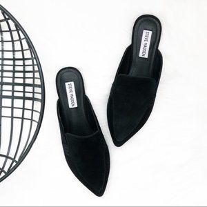 STEVE MADDEN - Black Scip Suede Pointy Mules NWT